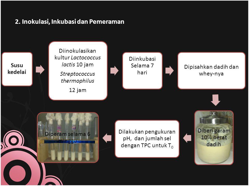 2. Inokulasi, Inkubasi dan Pemeraman Susu kedelai Diinokulasikan kultur Lactococcus lactis 10 jam Streptococcus thermophilus 12 jam Diinkubasi Selama