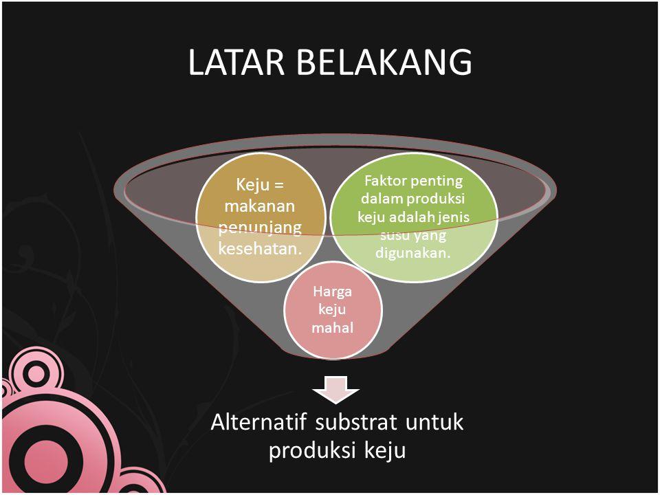 LATAR BELAKANG Alternatif substrat untuk produksi keju Harga keju mahal Keju = makanan penunjang kesehatan.