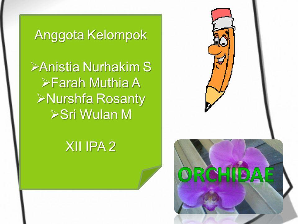 Anggota Kelompok  Anistia Nurhakim S  Farah Muthia A  Nurshfa Rosanty  Sri Wulan M XII IPA 2