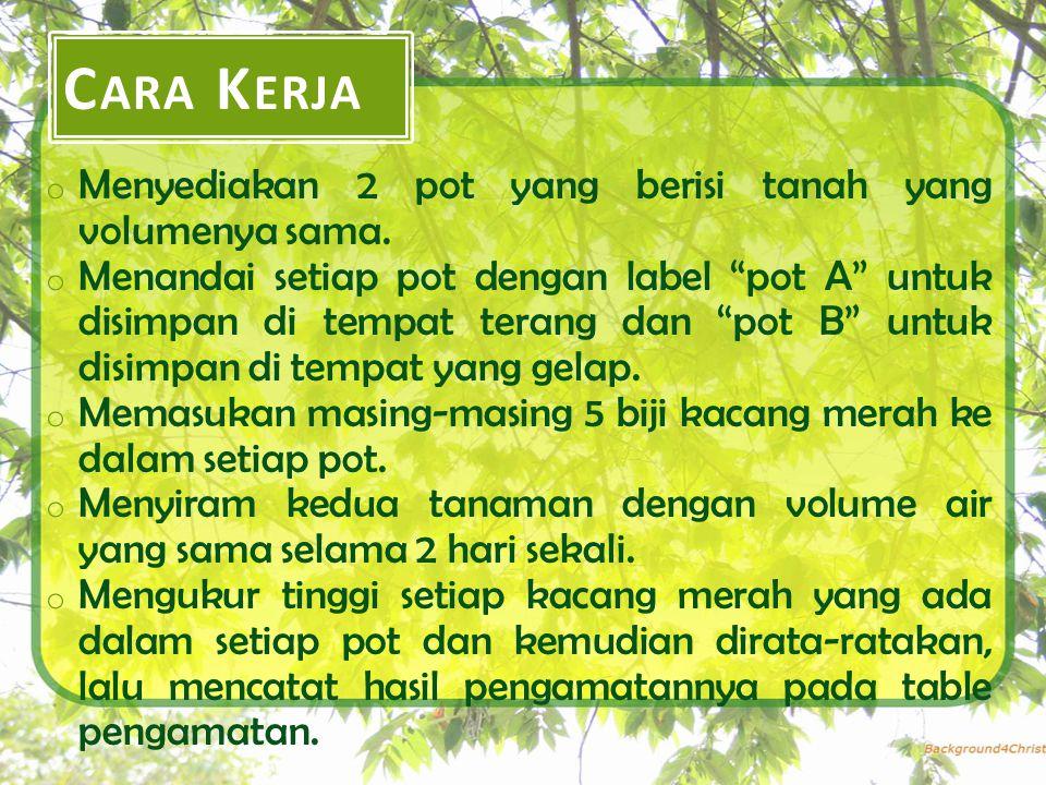 C ARA K ERJA o Menyediakan 2 pot yang berisi tanah yang volumenya sama.