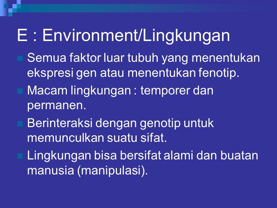E : Environment/Lingkungan Semua faktor luar tubuh yang menentukan ekspresi gen atau menentukan fenotip. Macam lingkungan : temporer dan permanen. Ber
