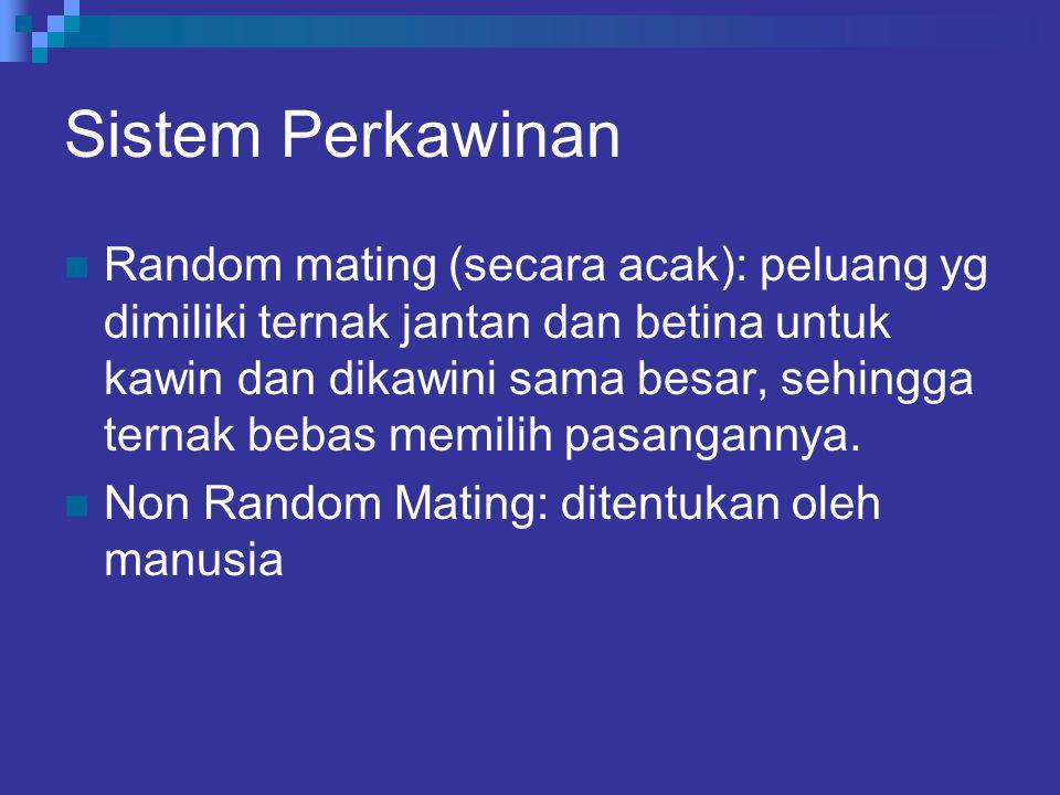 Sistem Perkawinan Random mating (secara acak): peluang yg dimiliki ternak jantan dan betina untuk kawin dan dikawini sama besar, sehingga ternak bebas