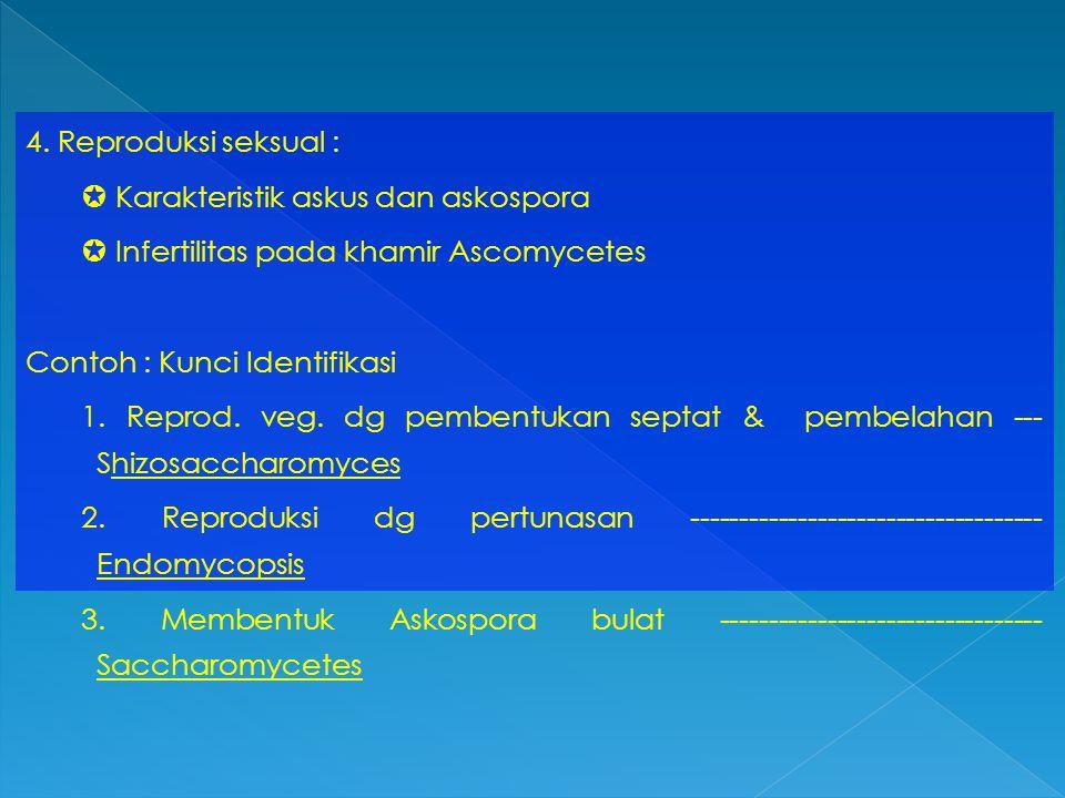 4. Reproduksi seksual :  Karakteristik askus dan askospora  Infertilitas pada khamir Ascomycetes Contoh : Kunci Identifikasi 1. Reprod. veg. dg pemb