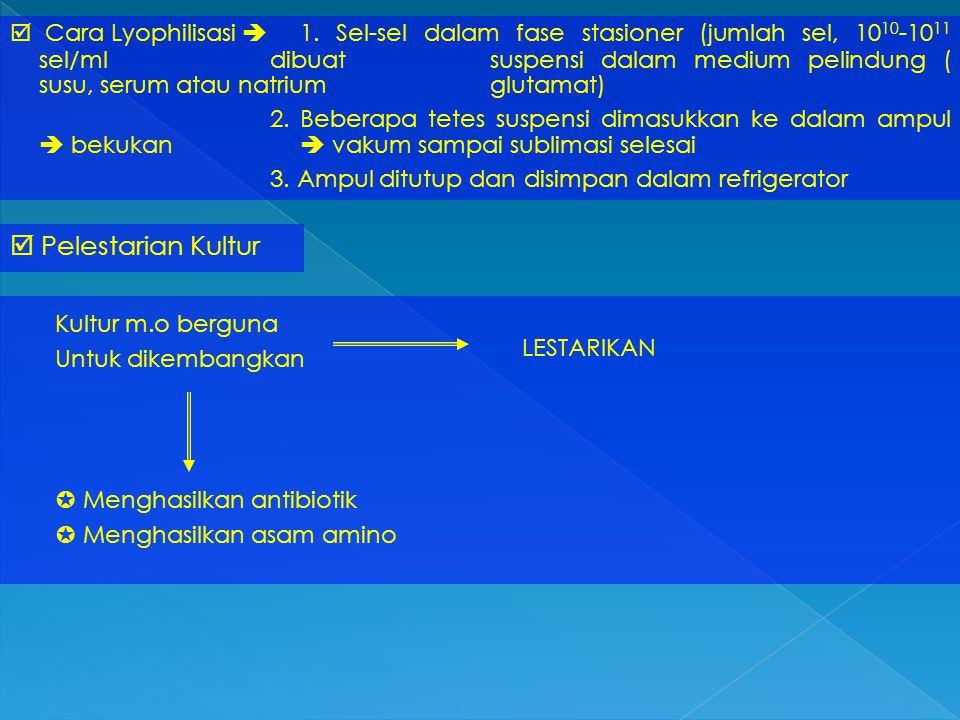  Pelestarian Kultur  Cara Lyophilisasi  1. Sel-sel dalam fase stasioner (jumlah sel, 10 10 -10 11 sel/ml dibuat suspensi dalam medium pelindung ( s