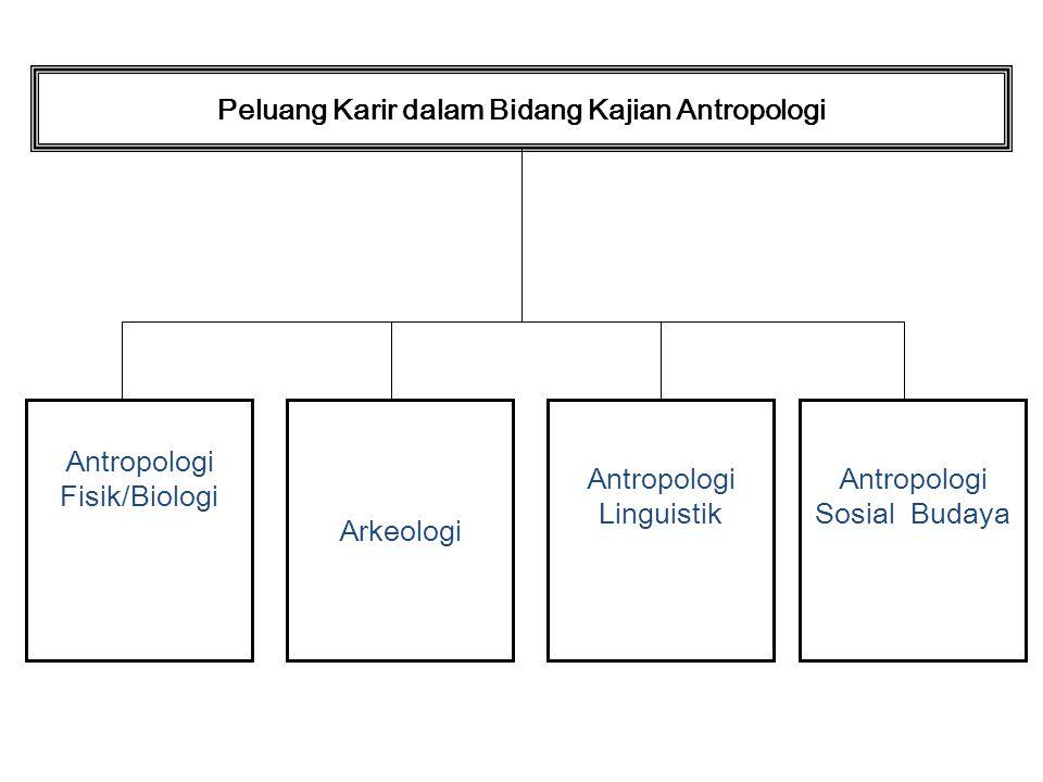 Peluang Karir dalam Bidang Kajian Antropologi Antropologi Fisik/Biologi Arkeologi Antropologi Linguistik Antropologi Sosial Budaya