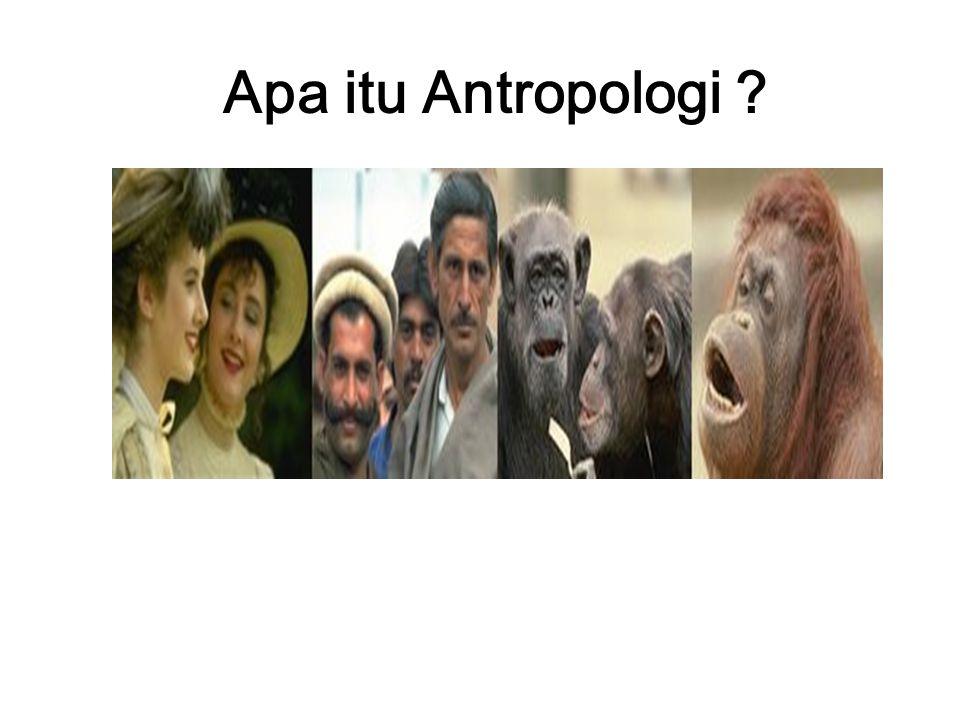 Apa itu Antropologi ?