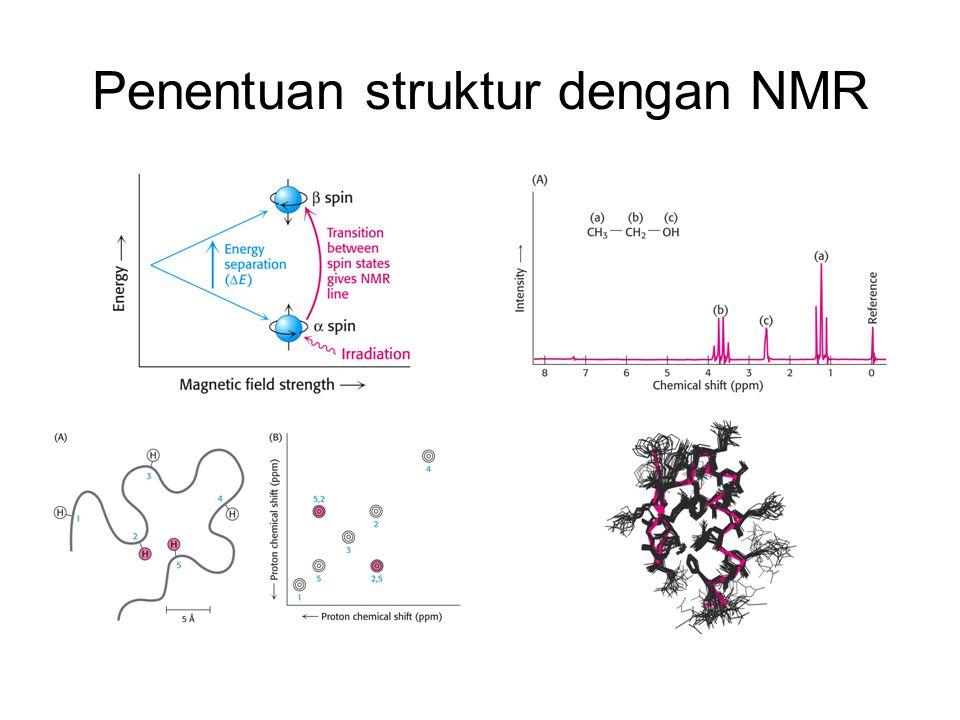 Penentuan struktur dengan NMR