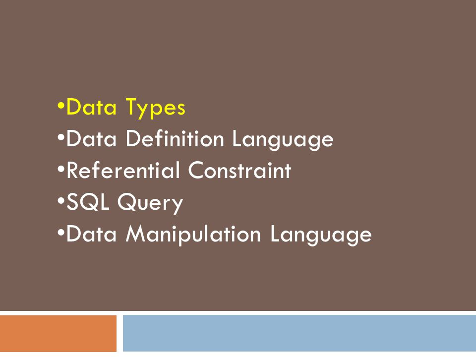 Data Types Data Definition Language Referential Constraint SQL Query Data Manipulation Language