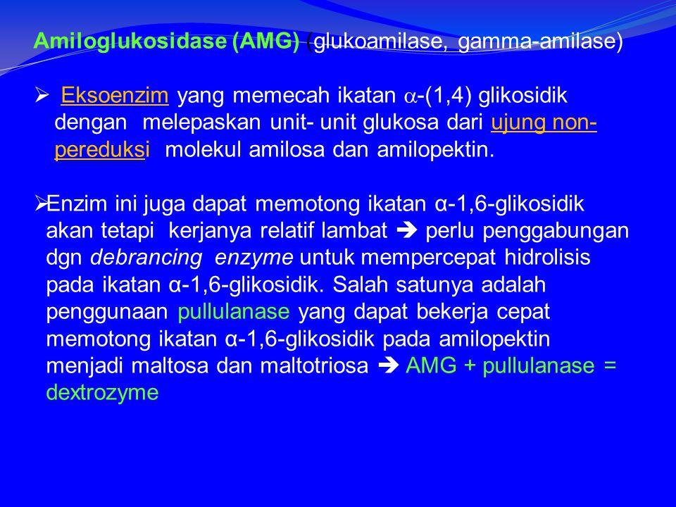 Amiloglukosidase (AMG) (glukoamilase, gamma-amilase)  Eksoenzim yang memecah ikatan  -(1,4) glikosidik dengan melepaskan unit- unit glukosa dari ujung non- pereduksi molekul amilosa dan amilopektin.