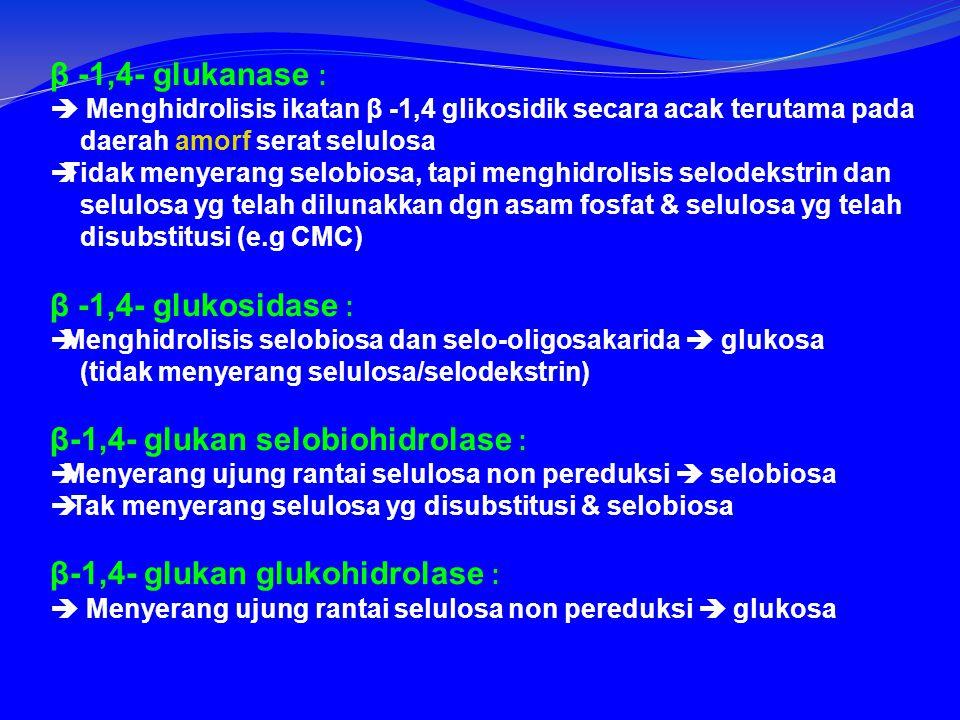 β -1,4- glukanase :  Menghidrolisis ikatan β -1,4 glikosidik secara acak terutama pada daerah amorf serat selulosa  Tidak menyerang selobiosa, tapi menghidrolisis selodekstrin dan selulosa yg telah dilunakkan dgn asam fosfat & selulosa yg telah disubstitusi (e.g CMC) β -1,4- glukosidase :  Menghidrolisis selobiosa dan selo-oligosakarida  glukosa (tidak menyerang selulosa/selodekstrin) β-1,4- glukan selobiohidrolase :  Menyerang ujung rantai selulosa non pereduksi  selobiosa  Tak menyerang selulosa yg disubstitusi & selobiosa β-1,4- glukan glukohidrolase :  Menyerang ujung rantai selulosa non pereduksi  glukosa