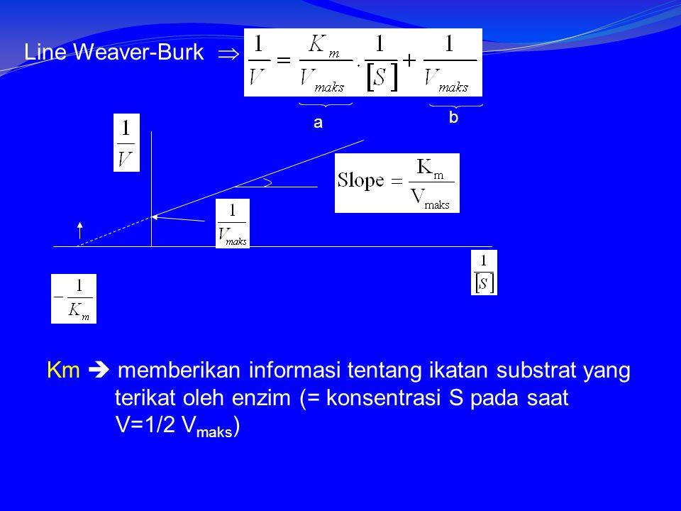 Line Weaver-Burk  a b Km  memberikan informasi tentang ikatan substrat yang terikat oleh enzim (= konsentrasi S pada saat V=1/2 V maks )