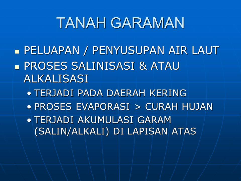 TIGA MACAM TANAH GARAMAN 1.TANAH SALIN Kadar garam larut netral tinggiKadar garam larut netral tinggi DHL tinggiDHL tinggi 2.TANAH ALKALI Kadar Na (natrium) tinggiKadar Na (natrium) tinggi pH tanah tinggi  karena hidrolisis Natrium KarbonatpH tanah tinggi  karena hidrolisis Natrium Karbonat 2 Na + + CO 3 + 2 H 2 O 2 Na + + 2OH - + H 2 CO 3 Hidrolisis Na dlm komplekHidrolisis Na dlm komplek Na[] + HOH H[] + Na + + OH - 3.TANAH SALIN-ALKALI