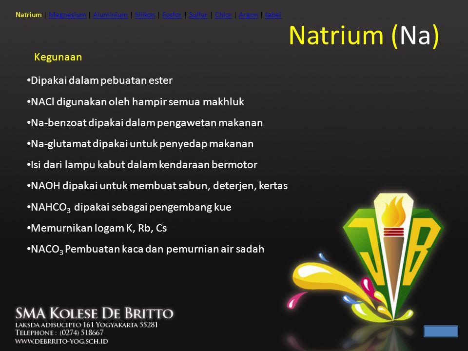 Natrium (Na) Kegunaan Dipakai dalam pebuatan ester NACl digunakan oleh hampir semua makhluk Na-benzoat dipakai dalam pengawetan makanan Na-glutamat di
