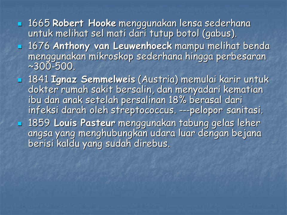 1665 Robert Hooke menggunakan lensa sederhana untuk melihat sel mati dari tutup botol (gabus). 1665 Robert Hooke menggunakan lensa sederhana untuk mel