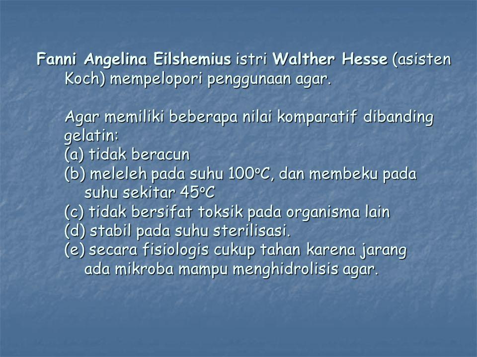 Fanni Angelina Eilshemius istri Walther Hesse (asisten Koch) mempelopori penggunaan agar. Agar memiliki beberapa nilai komparatif dibanding gelatin: (