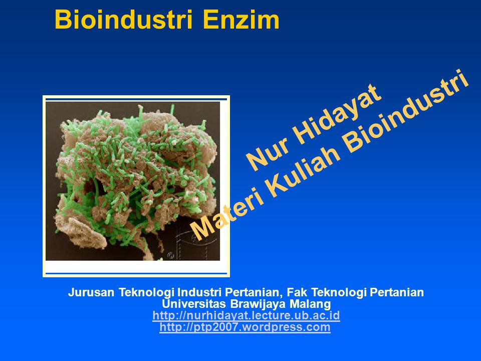 Cofactor Regeneration Chemical Photochemical Electrochemical Biological Enzymatic