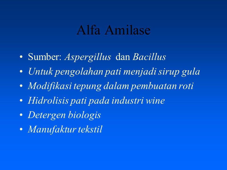 Alfa Amilase Sumber: Aspergillus dan Bacillus Untuk pengolahan pati menjadi sirup gula Modifikasi tepung dalam pembuatan roti Hidrolisis pati pada ind