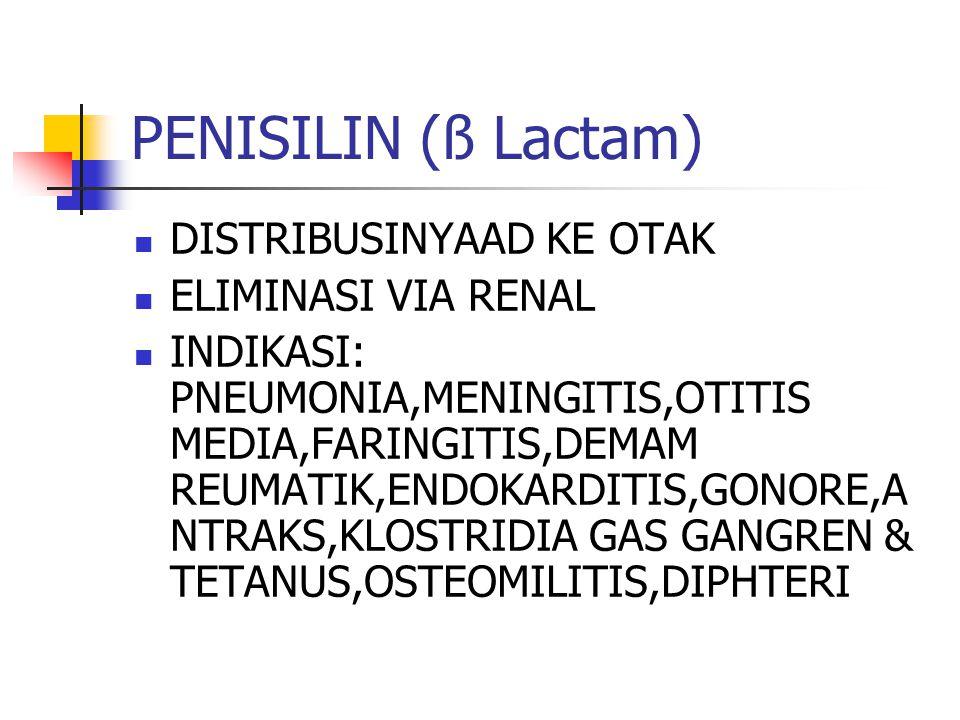 PENISILIN….