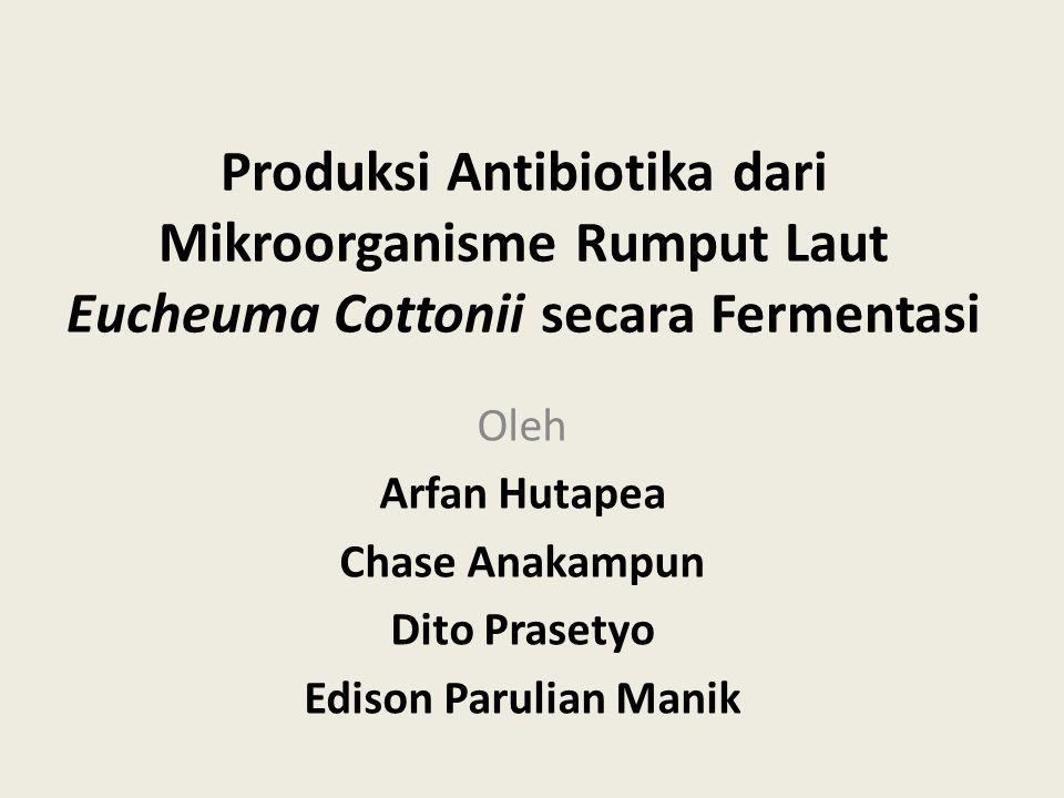 Produksi Antibiotika dari Mikroorganisme Rumput Laut Eucheuma Cottonii secara Fermentasi Oleh Arfan Hutapea Chase Anakampun Dito Prasetyo Edison Parul
