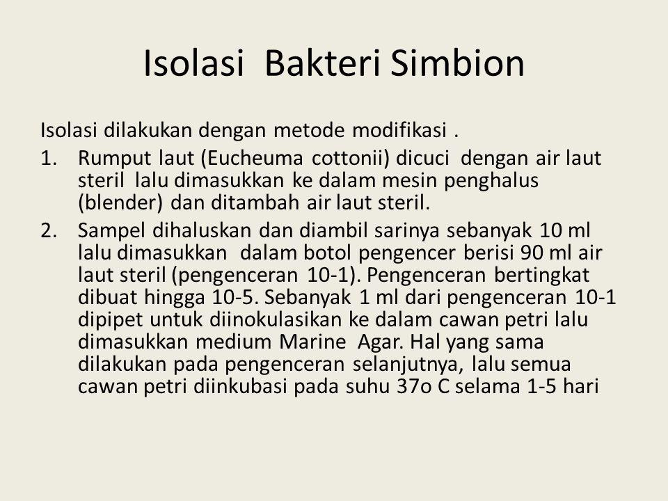 Isolasi Bakteri Simbion Isolasi dilakukan dengan metode modifikasi. 1.Rumput laut (Eucheuma cottonii) dicuci dengan air laut steril lalu dimasukkan ke