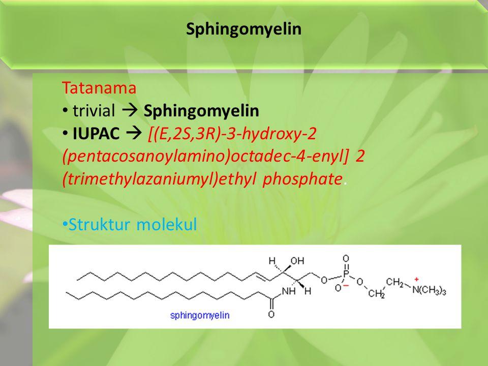 Sphingomyelin Tatanama trivial  Sphingomyelin IUPAC  [(E,2S,3R)-3-hydroxy-2 (pentacosanoylamino)octadec-4-enyl] 2 (trimethylazaniumyl)ethyl phosphate.
