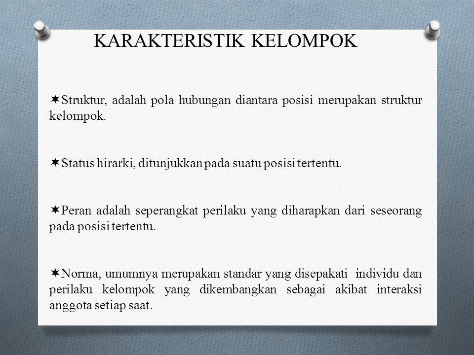 KARAKTERISTIK KELOMPOK  Struktur  Hirarki Status  Peran  Norma-norma  Kepemimpinan  Kesatupaduan/Kekompakan  Konflik Antar Kelompok 12