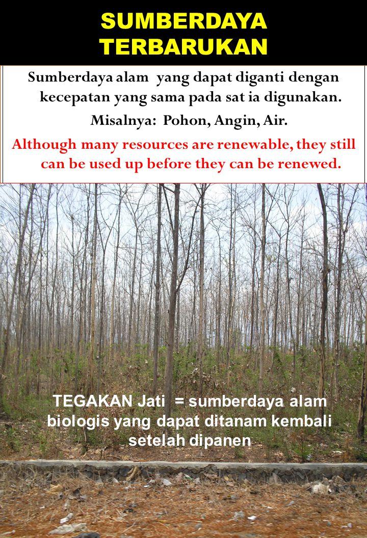 SUMBERDAYA TERBARUKAN Sumberdaya alam yang dapat diganti dengan kecepatan yang sama pada sat ia digunakan. Misalnya: Pohon, Angin, Air. Although many