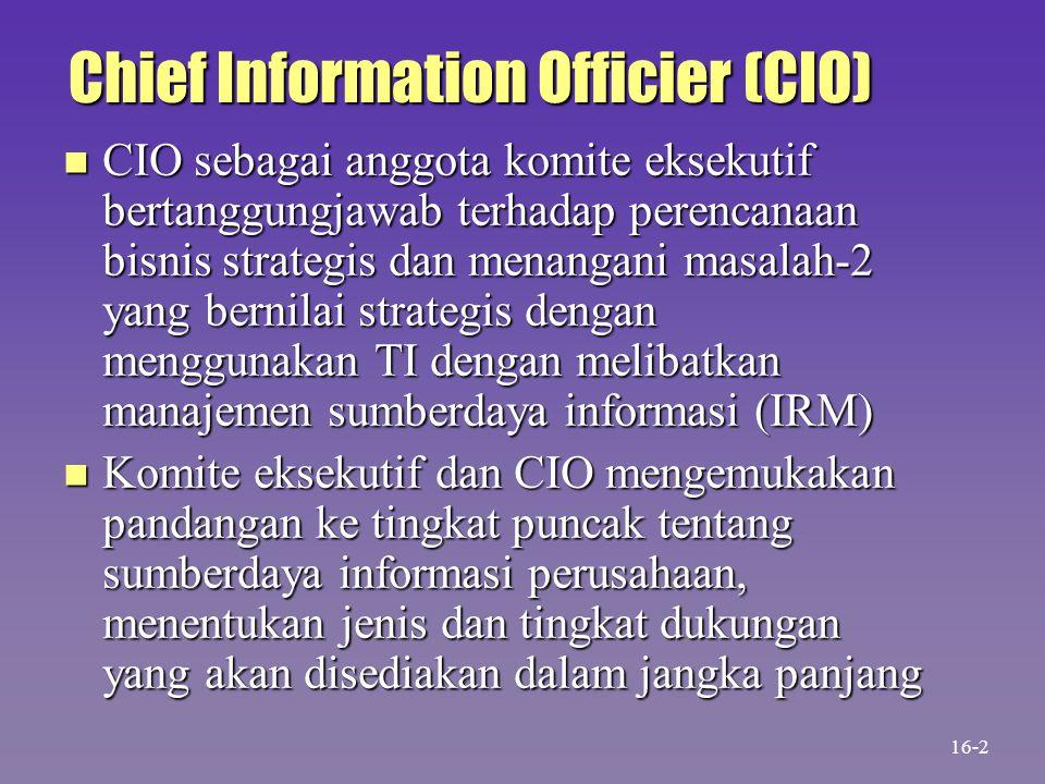 Chief Information Officier (CIO) n Komite pengarah (Steering Committee) bersama CIO sebagai ketua memberi pengarahan tambahan kepada sekelompok manajer tingkat organisasi yang dibawahnya yang mewakili perusahaan n Sumberdaya informasi perusahaan merupakan investasi besaar dan CIO bertanggungjawab menjaga agar aman dan terlindung 16-3