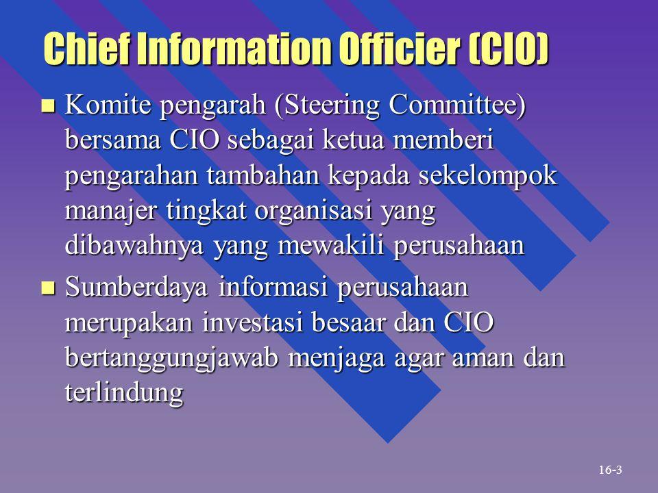 Chief Information Officier (CIO) n Komite pengarah (Steering Committee) bersama CIO sebagai ketua memberi pengarahan tambahan kepada sekelompok manaje