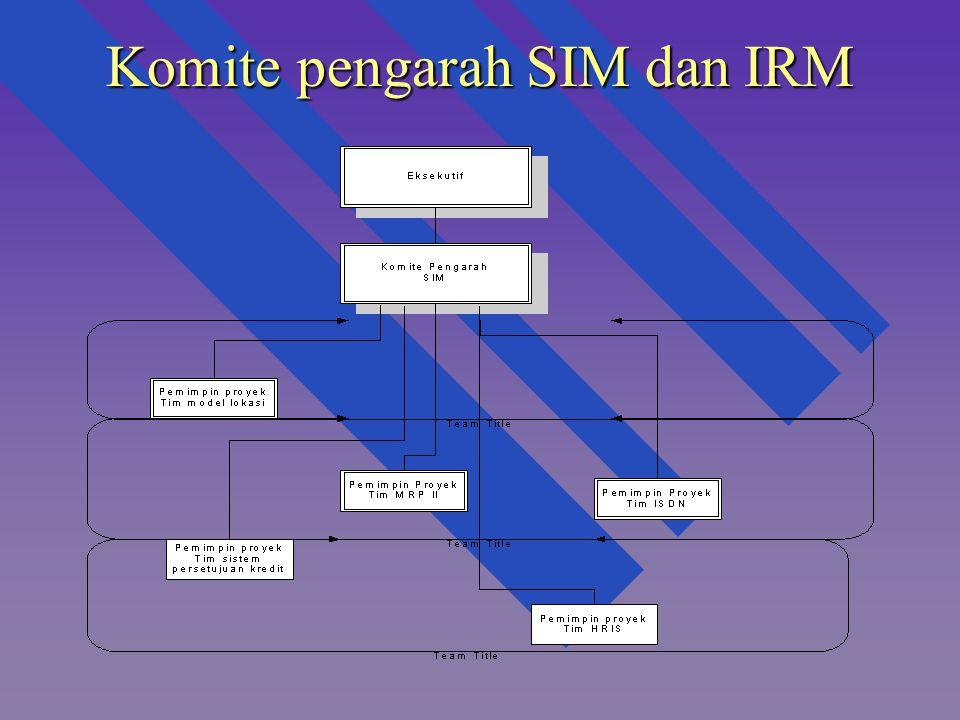 Komite pengarah SIM dan IRM