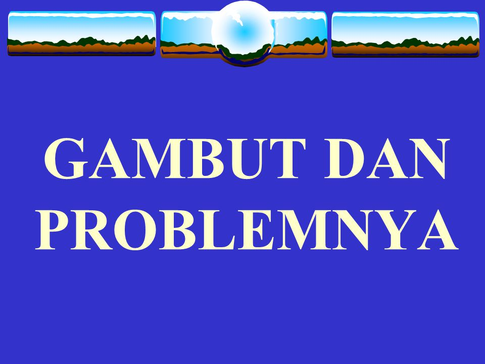 GAMBUT DAN PROBLEMNYA