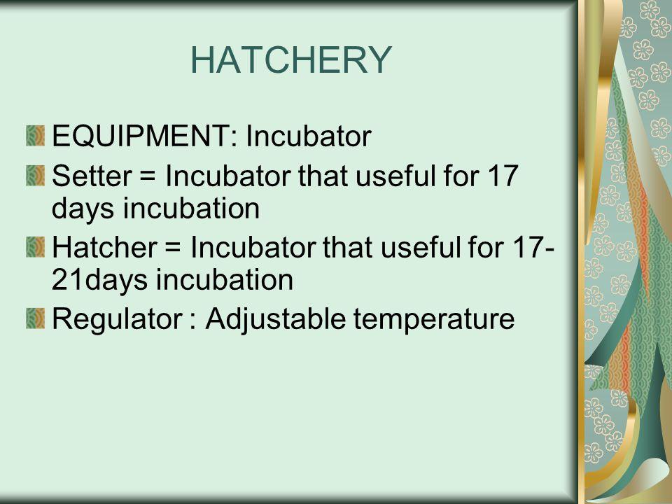 HATCHERY EQUIPMENT: Incubator Setter = Incubator that useful for 17 days incubation Hatcher = Incubator that useful for 17- 21days incubation Regulato