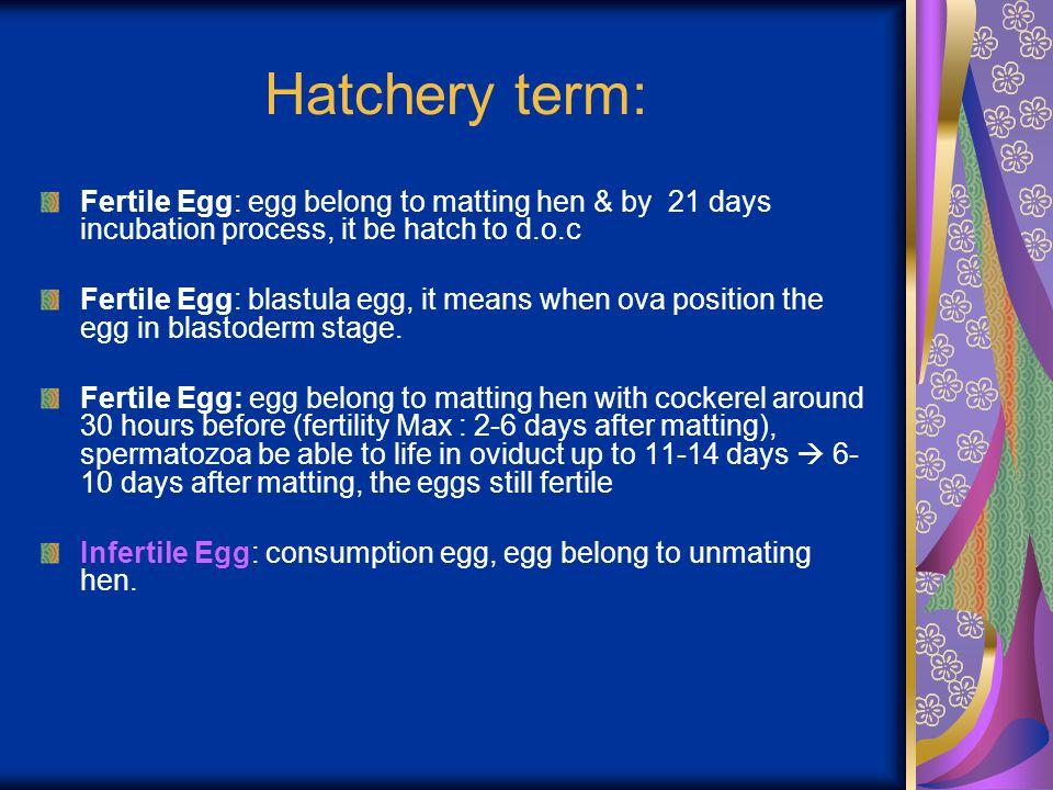 Hatchery term: Fertile Egg: egg belong to matting hen & by 21 days incubation process, it be hatch to d.o.c Fertile Egg: blastula egg, it means when ova position the egg in blastoderm stage.