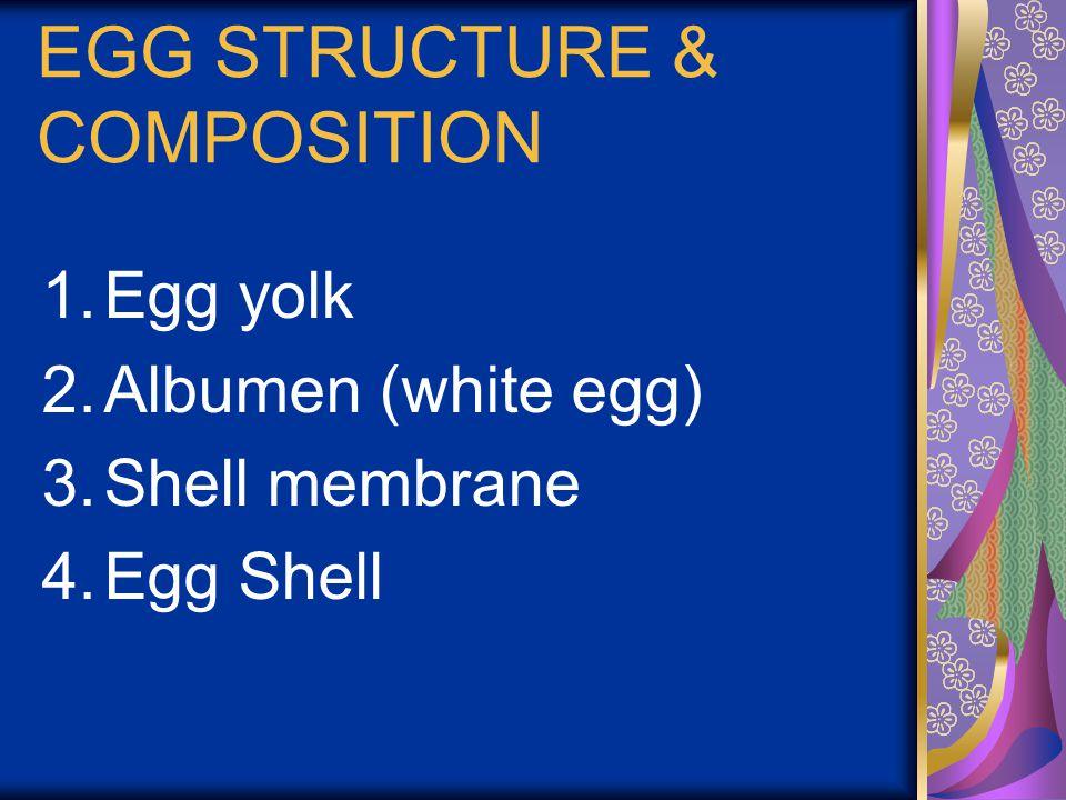 Egg Yolk (31%): 1.Latebra : The junction between discus germinal disk with egg yolk 2.Germinal Disk: Blastoderm stage of ovum cell 3.Concentric Ring of egg yolk 4.Vetelinne membrane : transparent membrane around egg yolk