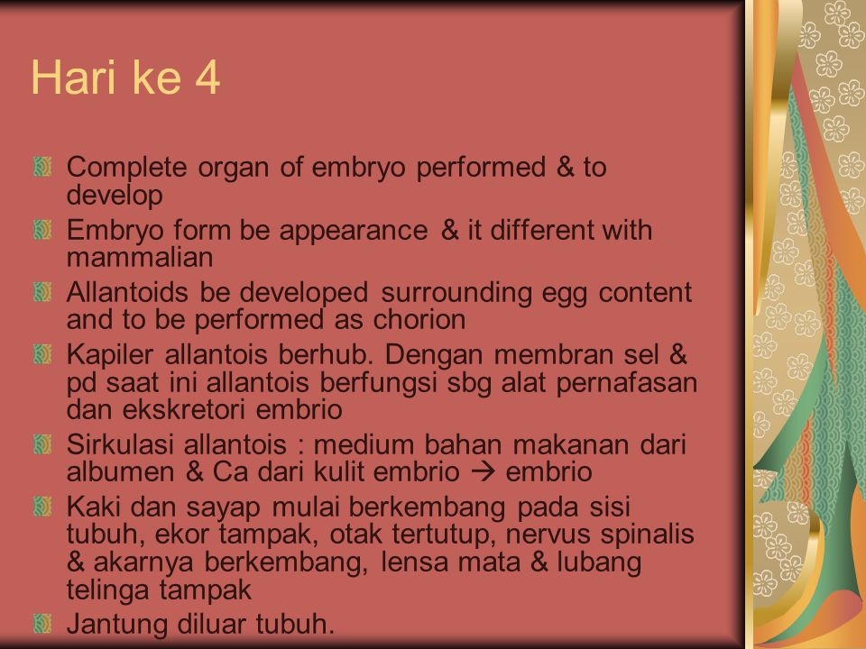 Hari ke 4 Complete organ of embryo performed & to develop Embryo form be appearance & it different with mammalian Allantoids be developed surrounding egg content and to be performed as chorion Kapiler allantois berhub.
