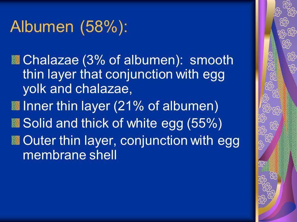 Handling of Egg Select the consumption egg and fertile egg Fertile Egg: - temperature > 26,7°C.