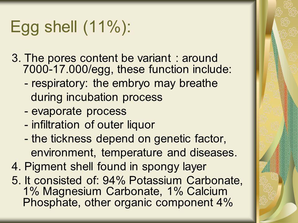 Egg shell (11%): 3.