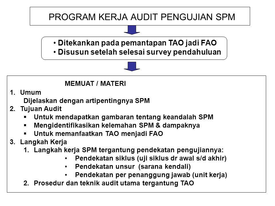 PROGRAM KERJA AUDIT PENGUJIAN SPM Ditekankan pada pemantapan TAO jadi FAO Disusun setelah selesai survey pendahuluan MEMUAT / MATERI 1.Umum Dijelaskan