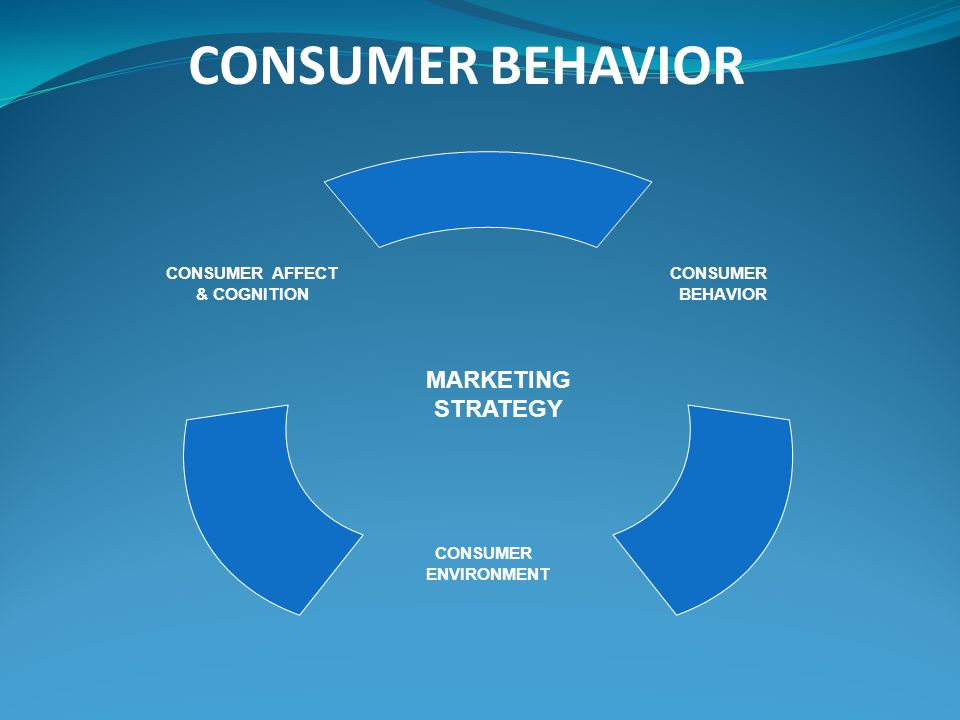 CONSUMER AFFECT & COGNITION CONSUMER ENVIRONMENT CONSUMER BEHAVIOR MARKETING STRATEGY CONSUMER BEHAVIOR