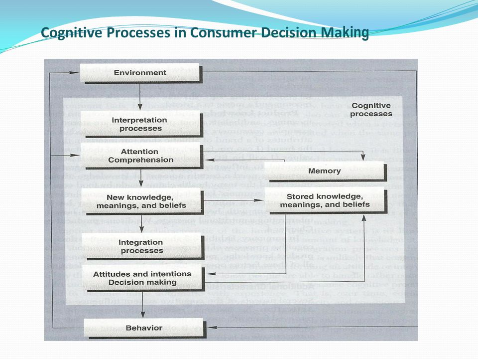 Cognitive Processes in Consumer Decision Ma king
