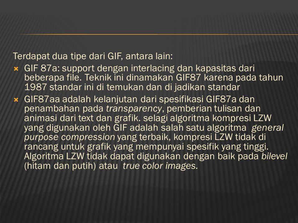 Terdapat dua tipe dari GIF, antara lain:  GIF 87a: support dengan interlacing dan kapasitas dari beberapa file.