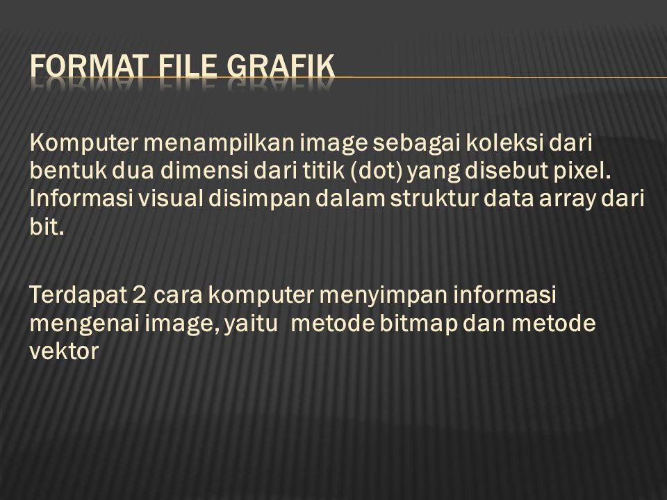 Bitmapped graphics menyimpan informasi image seperti yang ditampilkan pada layar, merupakan array kecil dengan bentuk segi empat.