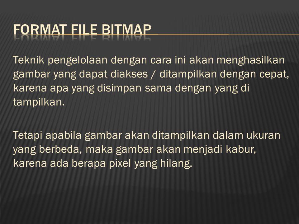 Ada beberapa format file grafik standar yang digunakan oleh PC diantaranya adalah : 1.