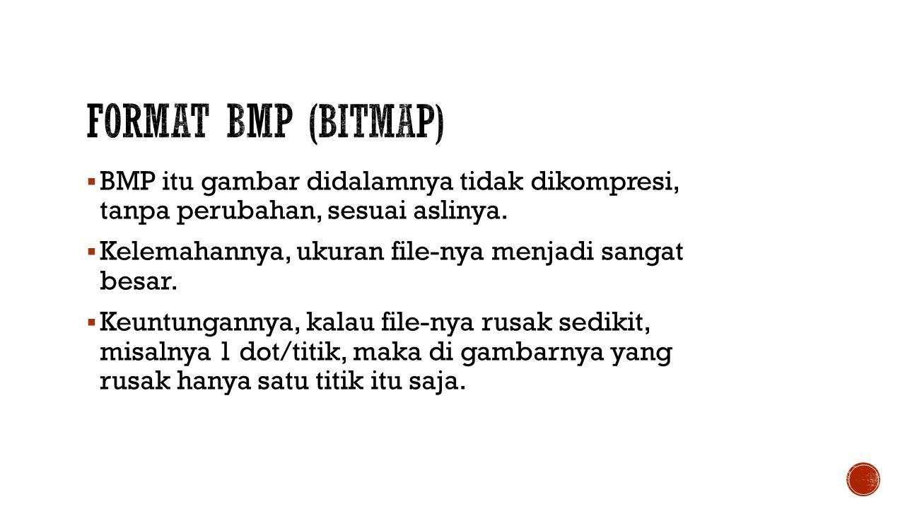  BMP itu gambar didalamnya tidak dikompresi, tanpa perubahan, sesuai aslinya.  Kelemahannya, ukuran file-nya menjadi sangat besar.  Keuntungannya,