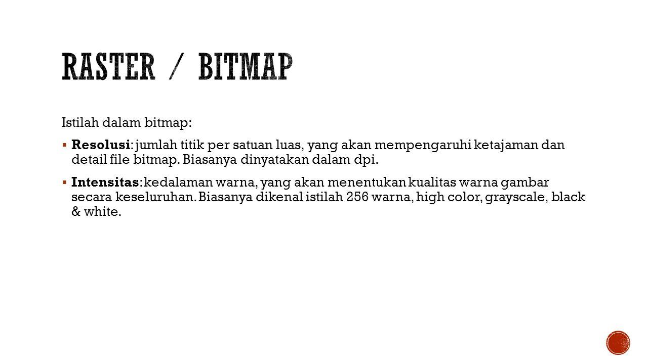 Istilah dalam bitmap:  Resolusi: jumlah titik per satuan luas, yang akan mempengaruhi ketajaman dan detail file bitmap. Biasanya dinyatakan dalam dpi