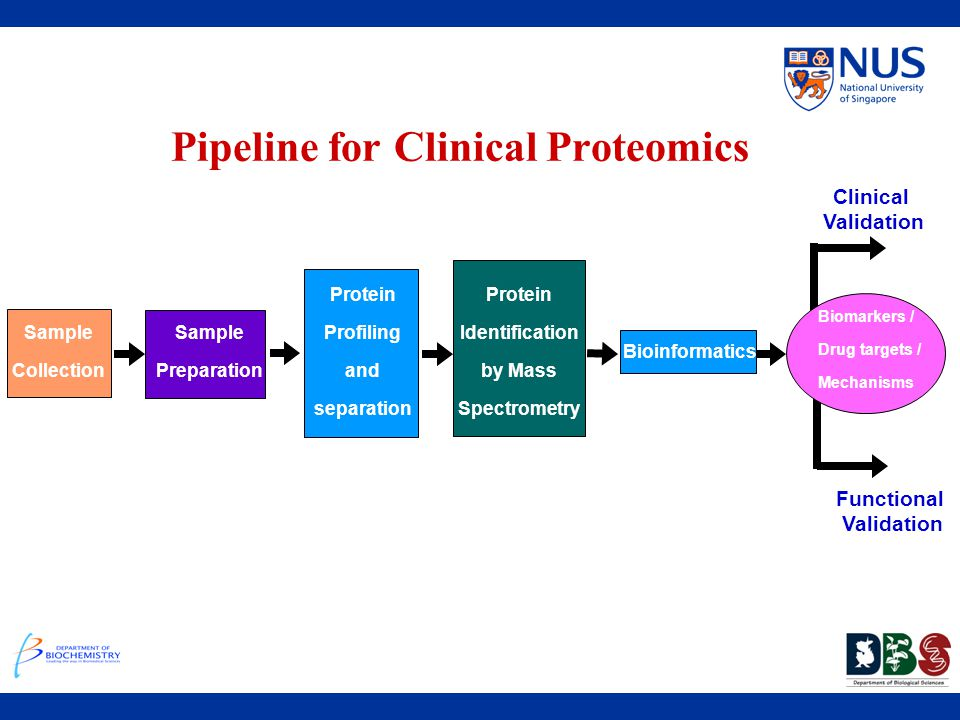 Functional Validation Clinical Validation Pipeline for Clinical Proteomics Sample Collection Biomarkers / Drug targets / Mechanisms Sample Preparation