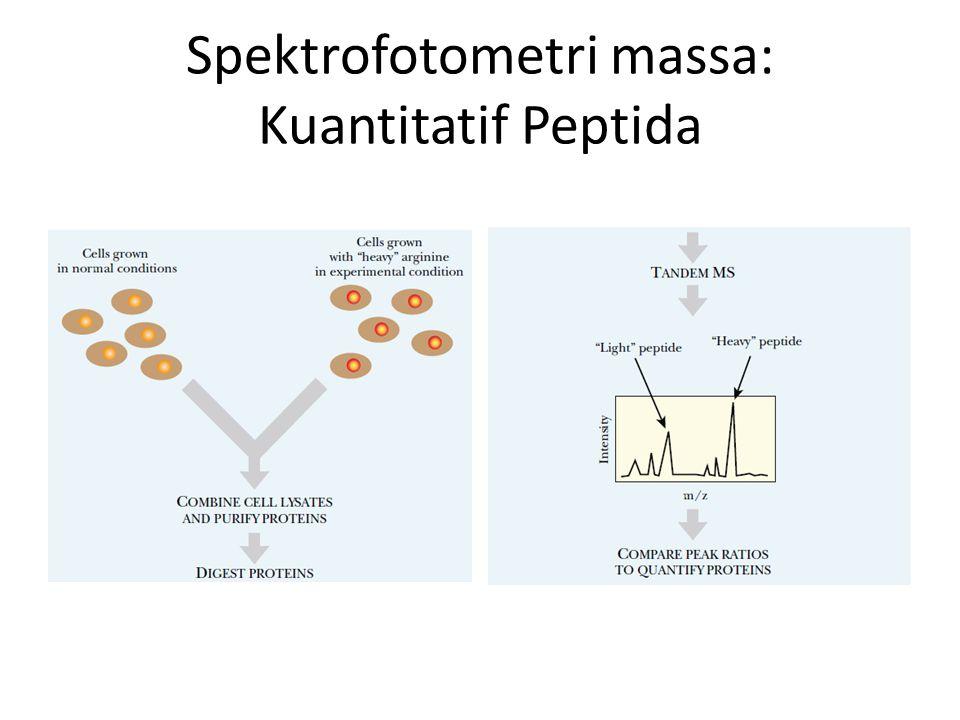 Spektrofotometri massa: Kuantitatif Peptida