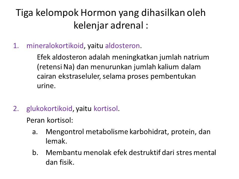 Tiga kelompok Hormon yang dihasilkan oleh kelenjar adrenal : 1.mineralokortikoid, yaitu aldosteron. Efek aldosteron adalah meningkatkan jumlah natrium