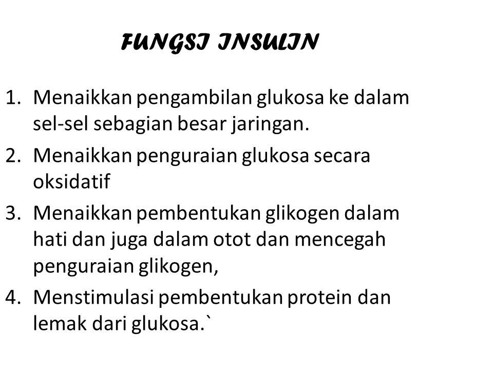 FUNGSI INSULIN 1.Menaikkan pengambilan glukosa ke dalam sel-sel sebagian besar jaringan. 2.Menaikkan penguraian glukosa secara oksidatif 3.Menaikkan p
