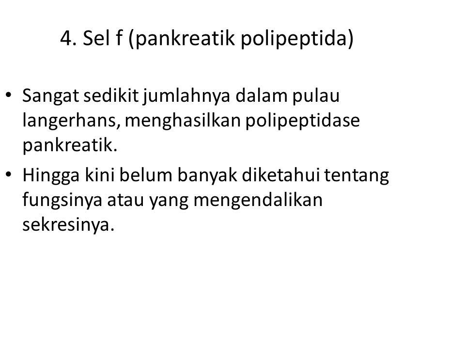 4. Sel f (pankreatik polipeptida) Sangat sedikit jumlahnya dalam pulau langerhans, menghasilkan polipeptidase pankreatik. Hingga kini belum banyak dik
